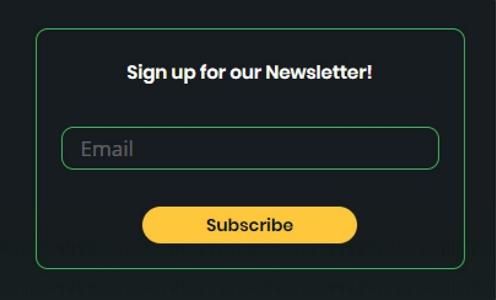 e-mail-marketing-ico-fallstudie
